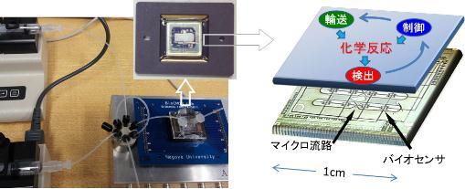 研究室で開発したバイオセンサ集積回路