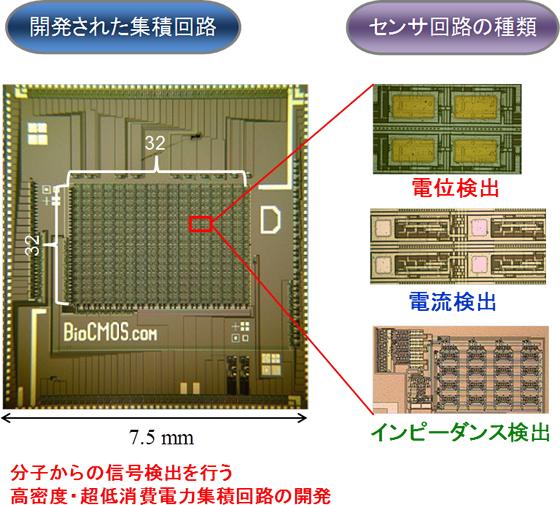 バイオセンサ集積回路における検出方法