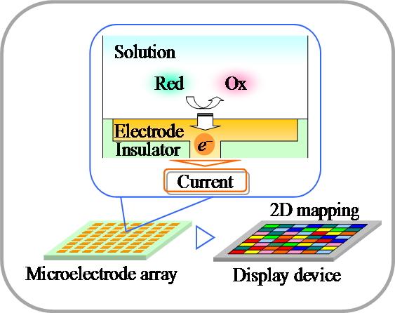電位検出型バイオセンサ集積回路
